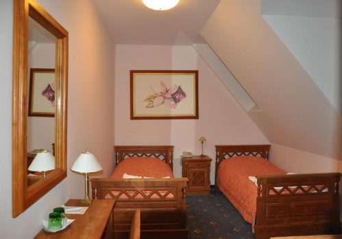 hotel-orchidea-twin-room